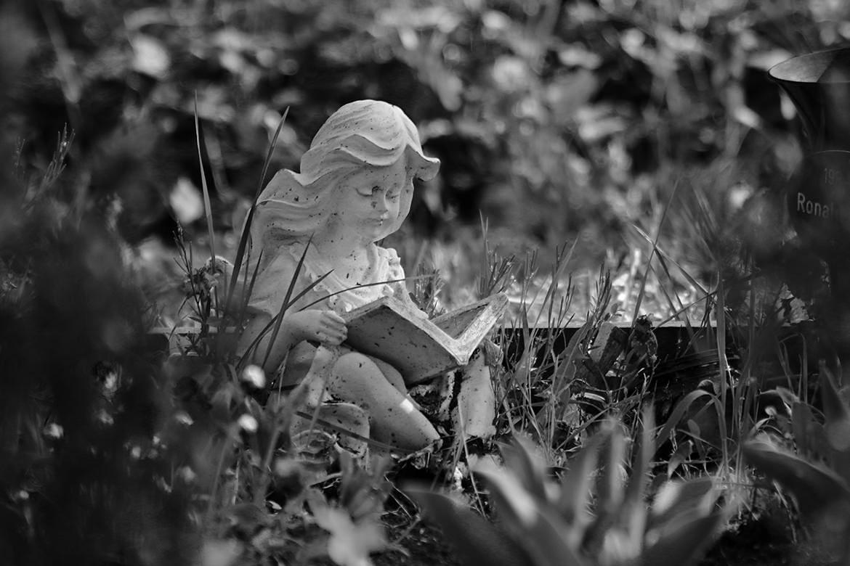 Ein Buch lesen...